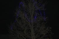 Éclairages de Noël
